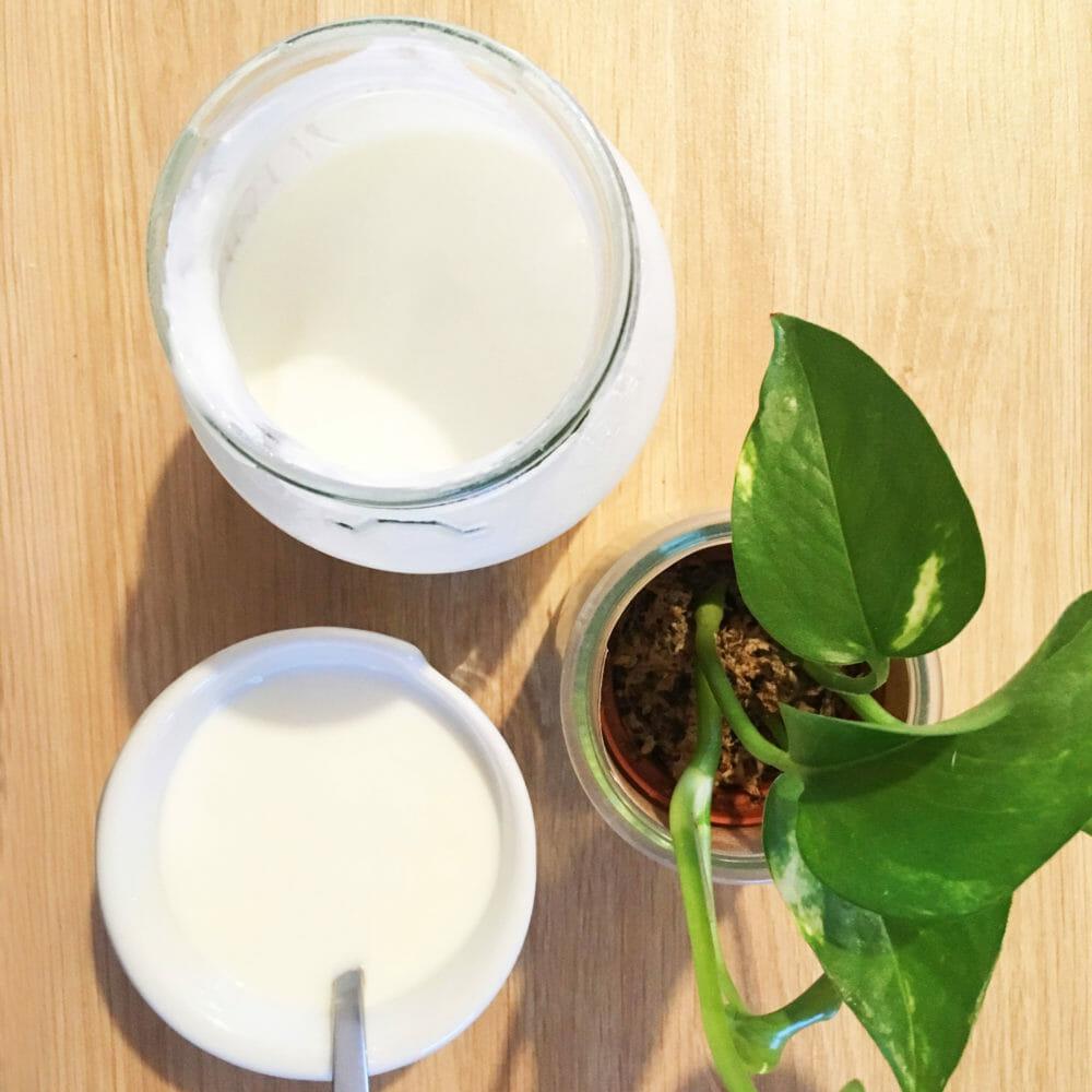 Recette ZD : les yaourts faciles sans yaourtière