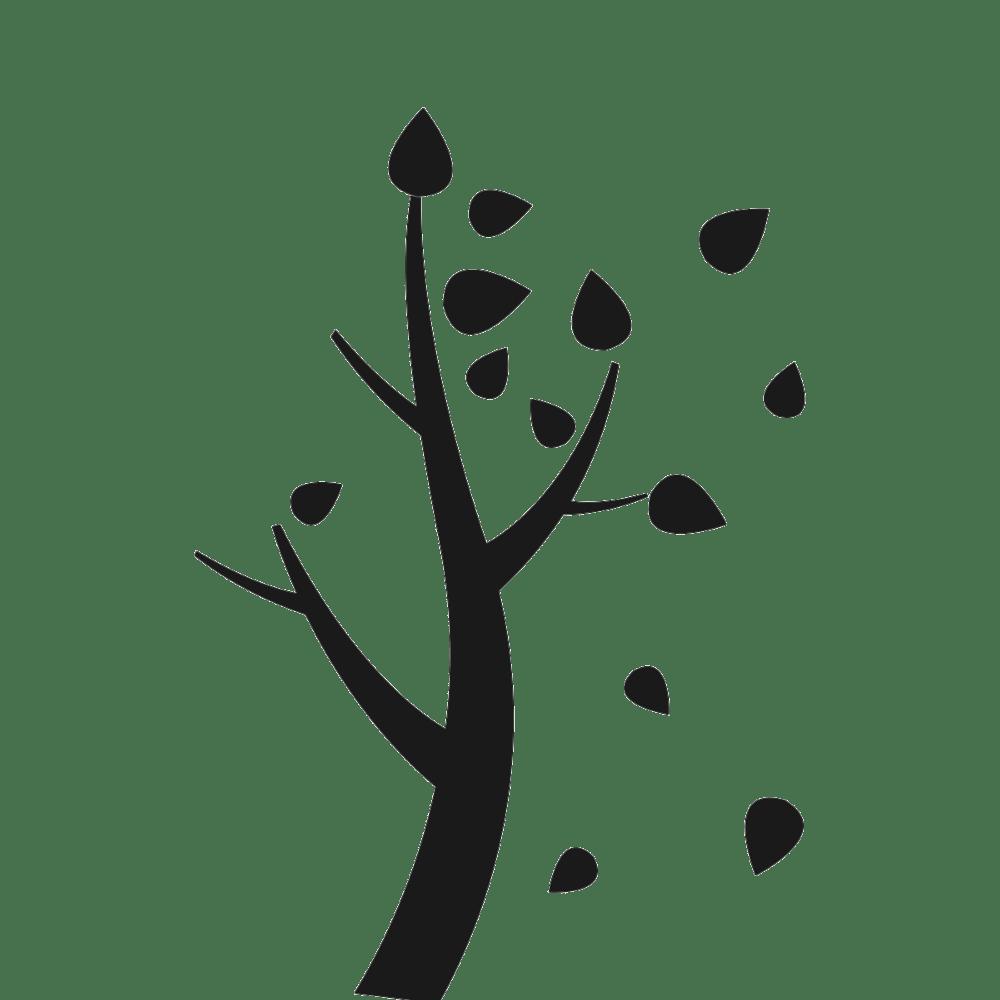 Logo automne box toute nü