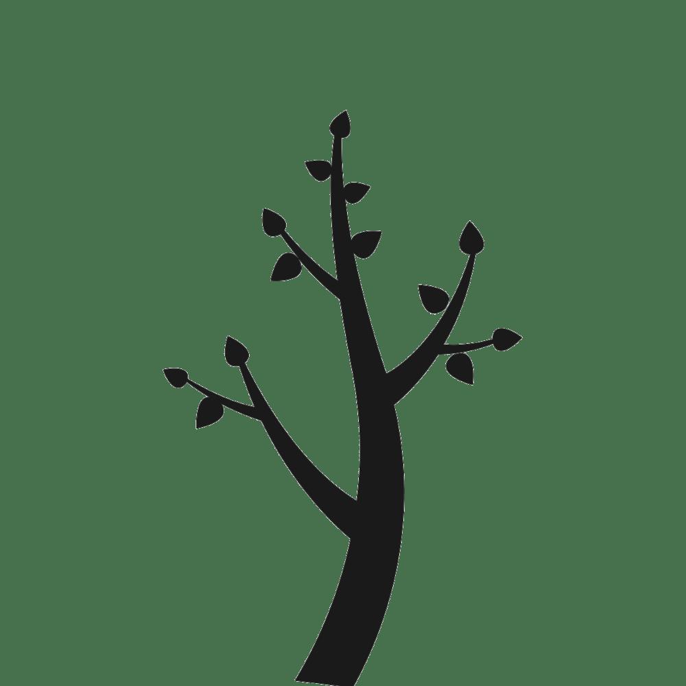 Logo printemps box toute nü