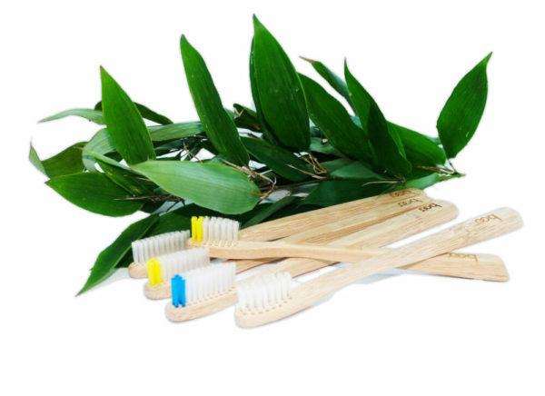Brosses à dents bambou